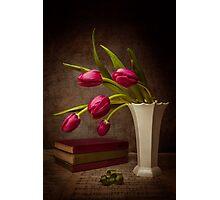 Love Of Tulips Photographic Print