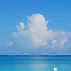 Beautiful Beach In Grand Cayman by yobab