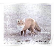 Crafty Fox Poster