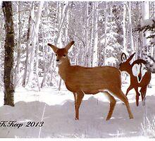Deer Crossing by SCbyKK