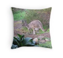 'Sweet Floe & her new Joey, Winter 2013, Adelaide Hills. S.A. Throw Pillow