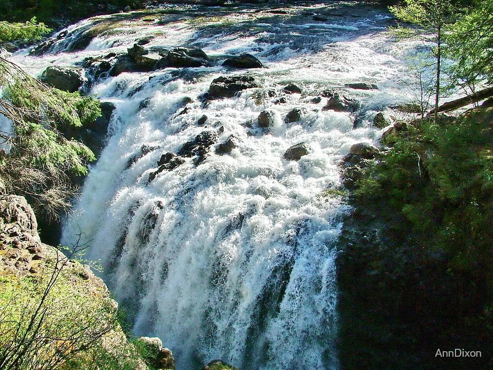 Englishman River Falls by AnnDixon
