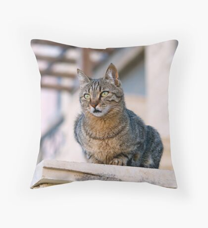 Minky of Aqaba Throw Pillow