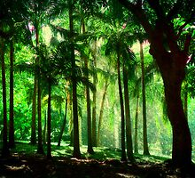 Light in the Jungles. Viridian Greens. Mauritius by JennyRainbow