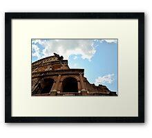Hawk of Colosseum Framed Print