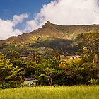 Mountain Mauritian Landscape by JennyRainbow