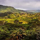 Chamarel 1. Mauritius by JennyRainbow