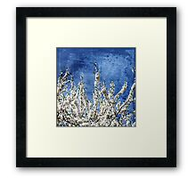 Cherry Blossoms on Blue Framed Print