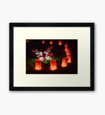 Butterfly Illuminare Framed Print