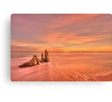 Red Sensation Canvas Print
