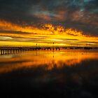 Corio Bay Sunrise by Danielle  Miner