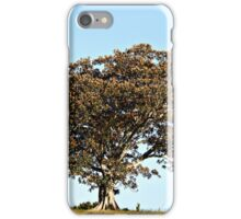 Moreton Bay Fig iPhone Case/Skin