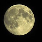Full Moon, Nova Scotia, July 21,2013 by Jasmin Stoffer