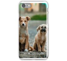 Adorable Dogs Staring iPhone Case/Skin