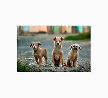 Adorable Dogs Staring Unisex T-Shirt