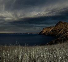 Fleurieu Peninsula Coastline in Moonlight by pablosvista2