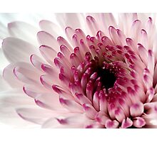 Inner Beauty Photographic Print