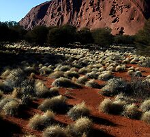 Dream Time Warriors  -  North Face Uluru  Oz by john  Lenagan