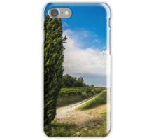 Vineyard in the italian countryside iPhone Case/Skin