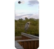 Great Blue Heron at Eagle Point Park, New Port Richey, FL iPhone Case/Skin