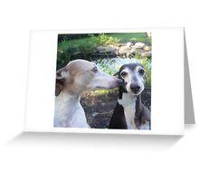 Goofballs Greeting Card