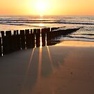 breakwaters on the beach in the evening sun  in Domburg Holland by 7horses