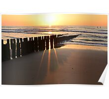 breakwaters on the beach in the evening sun  in Domburg Holland Poster