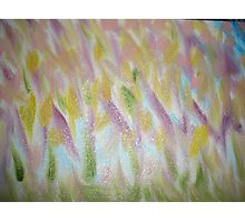 """Original Abstract Oil Painting """"Meadow Bloom"""" Photographic Print"""