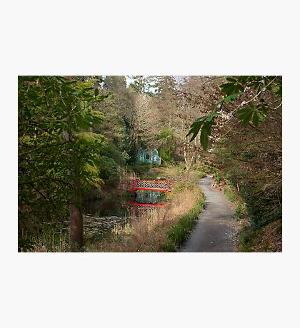 Portmeirion Gardens Photographic Print