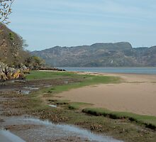 Portmeirion Beach by Kevin Cartwright