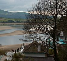 Estuary from Portmeirion by Kevin Cartwright