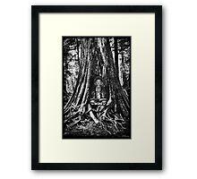 ☀ ツBUDDA IN TREE TRUNK☀ ツ Framed Print