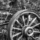Wagon Wheel by Christopher Herrfurth