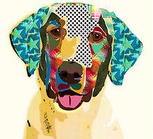 Labrador by Marcia  Pinho