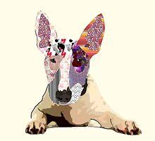Bullterrier by Marcia  Pinho