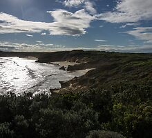 Bay of Islands 201306065232 by Fred Mitchell