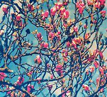 Spectacular Pink Grace: Oriental Magnolia by Paula Belle Flores