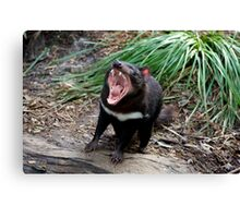 Nothing Wrong With This Devil's Teeth! Canvas Print