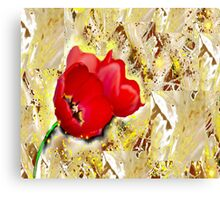 Floral - Tulips  Canvas Print