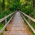 ELGIN TORRIESTON WALKS BRIDGE by JASPERIMAGE