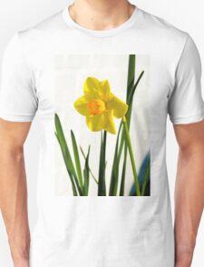 Daffodil HQ Unisex T-Shirt