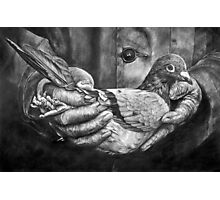Bird In The Hand Photographic Print