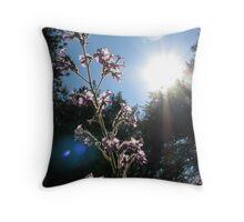 Sunlight Feeds the Flower Throw Pillow