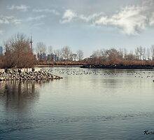 Waterfowl Paradise by KatMagic Photography