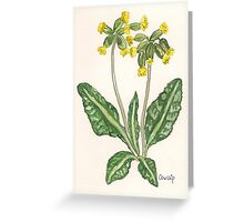 Cowslips Greeting Card