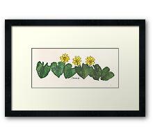 Celandines Framed Print