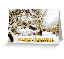 A Snowy Scene in Barda, Romania - Christmas card Greeting Card