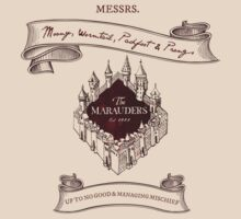 Marauders - Up to No Good & Managing Mischief Since 1971 by thebiscuitgirl
