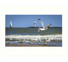 A Good Day for Sailboats & Seagulls Art Print