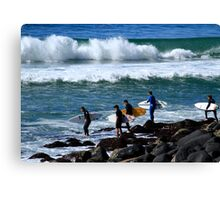 Everybody's Gone Surfing  Canvas Print